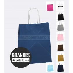 Bolsa Color / Asa retorcida /  Grande