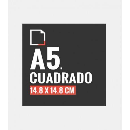 Flyers Cuadrado A5