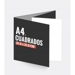 Cuadripticos Cuadrados A4
