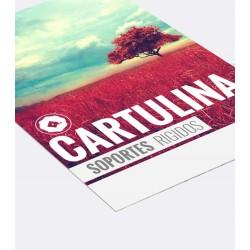 Cartulina - Carton